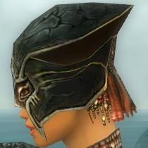 File:Warrior Luxon Armor F gray head side.jpg