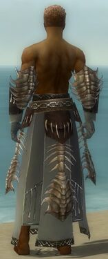 Dervish Primeval Armor M gray arms legs back