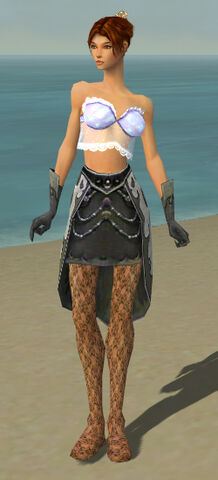 File:Elementalist Elite Flameforged Armor F gray arms legs front.jpg
