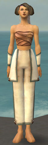 File:Monk Sacred Armor F gray arms legs front.jpg