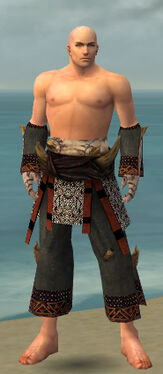 Monk Primeval Armor M gray arms legs front