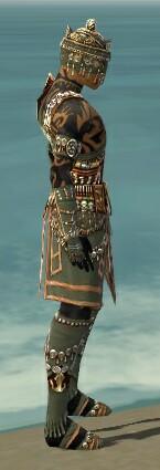 File:Ritualist Elite Imperial Armor M gray side alternate.jpg