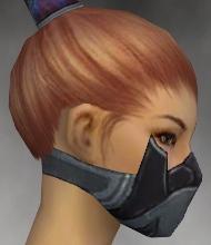 File:Assassin Elite Canthan Armor F gray head side.jpg