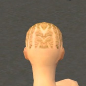 File:Monk Primeval Armor F dyed head back.jpg