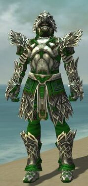 Warrior Silver Eagle Armor M dyed front