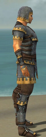 File:Warrior Tyrian Armor M dyed side.jpg