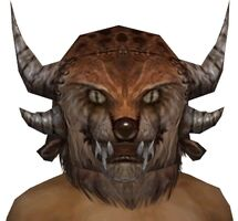 Charr Hat gray front