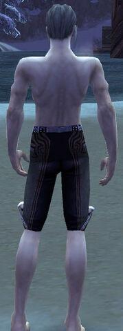 File:Exquisite Leggings M gray back.jpg