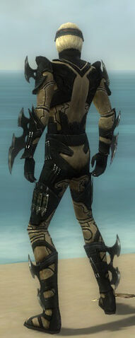 File:Assassin Kurzick Armor M dyed back.jpg