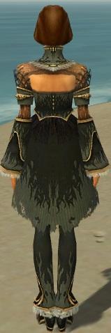 File:Mesmer Primeval Armor F gray chest feet back.jpg