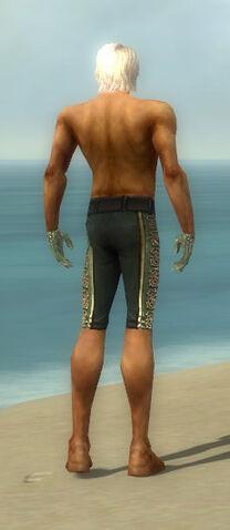 File:Mesmer Elite Canthan Armor M gray arms legs back.jpg