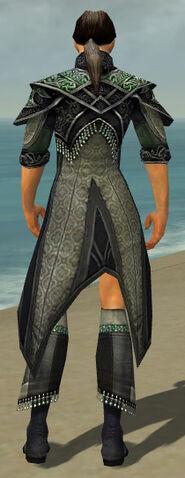 File:Elementalist Elite Luxon Armor M gray chest feet back.jpg