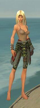 Ranger Elite Luxon Armor F gray arms legs front