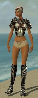 Warrior Ancient Armor F gray chest feet front