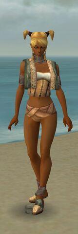 File:Monk Vabbian Armor F gray chest feet front.jpg