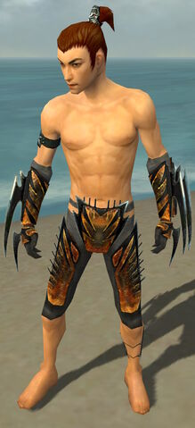 File:Assassin Elite Exotic Armor M gray arms legs front.jpg