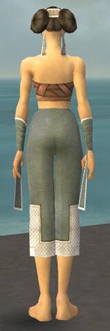 File:Monk Krytan Armor F gray arms legs back.jpg