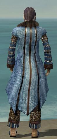 File:Elementalist Vabbian Armor M dyed back.jpg
