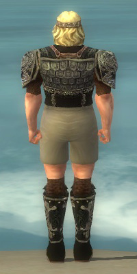 File:Warrior Canthan Armor M gray chest feet back.jpg