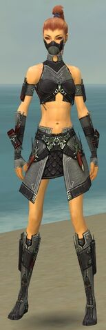File:Assassin Elite Canthan Armor F gray front.jpg