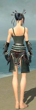 Necromancer Asuran Armor F gray arms legs back