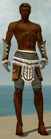 File:Ranger Canthan Armor M gray arms legs front.jpg