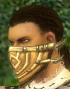 File:Ranger Elite Kurzick Armor M gray head side.jpg