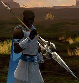 Starter Spear