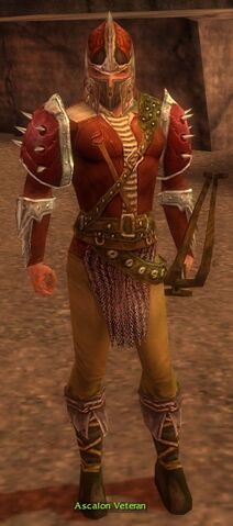 File:Ascalon Veteran.jpg