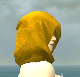 File:Shining Blade Uniform F dyed head side.jpg