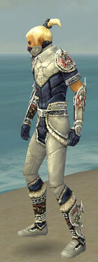 Assassin Norn Armor M dyed side