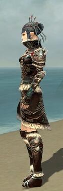 Necromancer Norn Armor F gray side