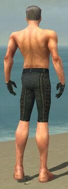 Mesmer Elite Rogue Armor M gray arms legs back