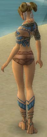 File:Monk Luxon Armor F gray chest feet back.jpg