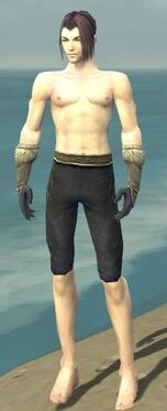 Elementalist Norn Armor M gray arms legs front