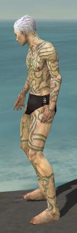 File:Necromancer Scar Pattern Armor M gray side.jpg