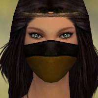 File:Ranger Norn Armor F dyed head front.jpg