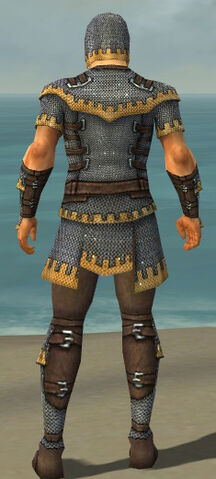 File:Warrior Tyrian Armor M dyed back.jpg