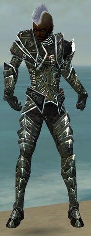File:Necromancer Fanatic Armor M gray front.jpg