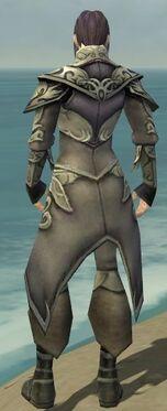 Elementalist Monument Armor M gray back