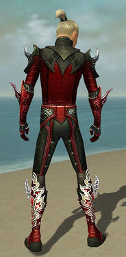 Assassin Deldrimor Armor M dyed back