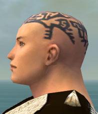 File:Monk Elite Sunspear Armor M gray head side.jpg