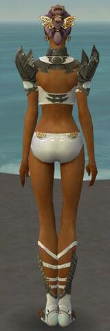 File:Paragon Elite Sunspear Armor F gray chest feet back.jpg