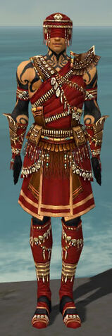 File:Ritualist Imperial Armor M dyed front.jpg