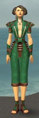 File:Monk Censor Armor F dyed front.jpg