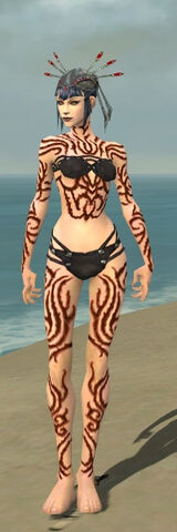 File:Necromancer Scar Pattern Armor F dyed front.jpg