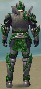 Warrior Platemail Armor M dyed back