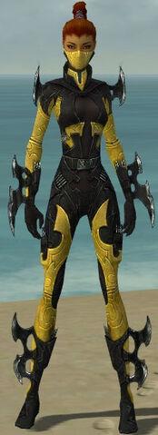 File:Assassin Kurzick Armor F dyed front.jpg