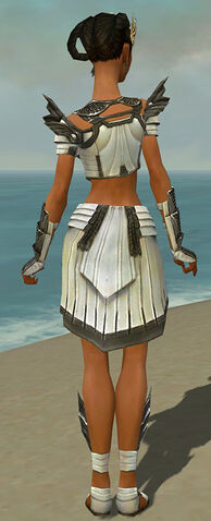 File:Paragon Ancient Armor F gray back.jpg