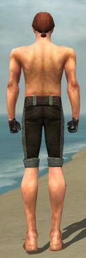 Mesmer Tyrian Armor M gray arms legs back